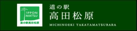 道の駅高田松原